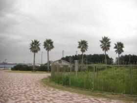 袖ヶ浦海浜公園・車中泊
