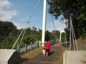 亀山湖・遊歩道の橋