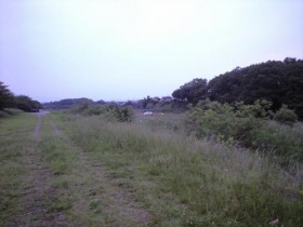 入間川キャンプ