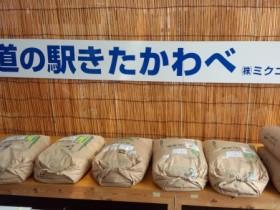 道の駅きたかわべ・車中泊 (8)