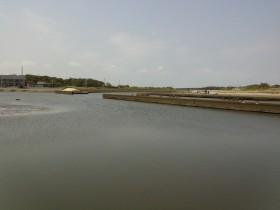 栗山川河口 (6)